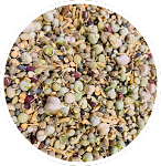 Freeze Dried Organic Sprouted Sprouts